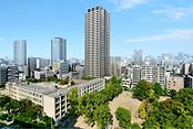 ジオタワー南堀江